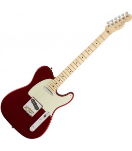 Fender AM Pro Tele MN CAR