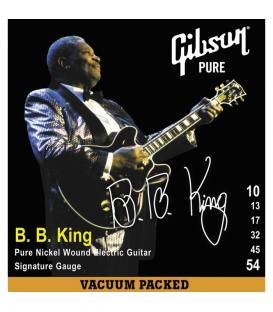 Gibson Electrica B.B.King Signature .010-.054